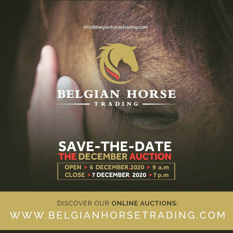 BHT The December Auction