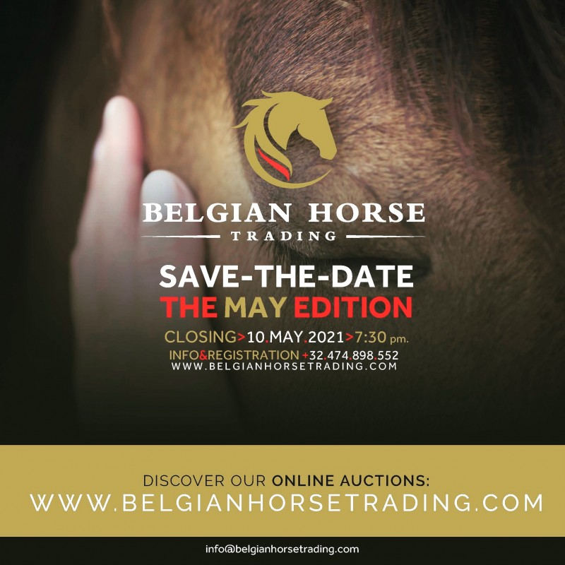 BHT The MAY auction